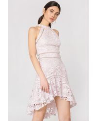 True Decadence - Detailed Lace Dress - Lyst