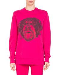 Givenchy - Rottweiler-print Crewneck Long-sleeve Cotton Sweatshirt - Lyst