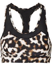 The Upside - Chrissy Mesh-trimmed Leopard-print Stretch Sports Bra - Lyst