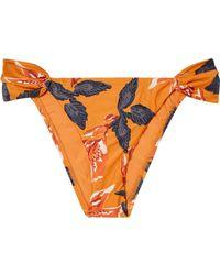 ViX - Tulum Floral-print Bikini Briefs - Lyst