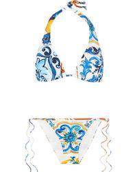 Dolce & Gabbana - Printed Triangle Bikini - Lyst