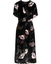 Markus Lupfer - Alexia Floral-print Velvet Midi Dress - Lyst