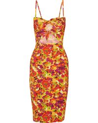 Adriana Degreas - Printed Cutout Stretch-crepe Dress - Lyst