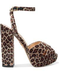 70842535f8a Charlotte Olympia - Velvet Leopard-print Platform Sandals - Lyst