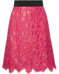 Dolce & Gabbana - Guipure Lace Skirt - Lyst