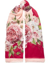 Dolce & Gabbana - Floral-print Modal And Cashmere-blend Scarf - Lyst