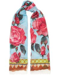 Dolce & Gabbana - Frayed Printed Cashmere And Silk-blend Scarf - Lyst