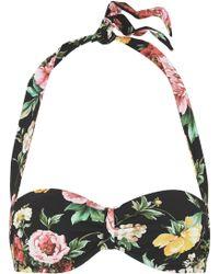 Dolce & Gabbana - Floral-print Halterneck Bikini Top - Lyst