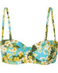 Dolce & Gabbana - Floral-print Underwired Bikini Top - Lyst