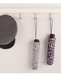 New Look - Light Purple Leopard Print Umbrella - Lyst