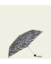 New Look - Monochrome Zebra Print Collapsible Umbrella - Lyst
