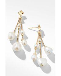 David Yurman Bijoux Bead Link Drop Earrings In 18k Gold
