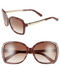 Kate Spade - 'darrilyn' 58mm Butterfly Sunglasses - Blush Tortoise - Lyst