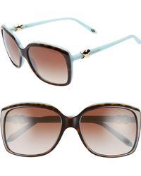 Tiffany & Co. - 58mm Rectangular Sunglasses - Havana/ Blue/ Brown Gradient - Lyst