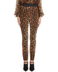 Dolce & Gabbana - Leopard Print Cady Leggings - Lyst
