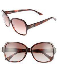 Juicy Couture - Shades Of 57mm Square Sunglasses - Dark Havana - Lyst