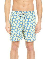 Tom & Teddy - Shell Print Swim Trunks - Lyst
