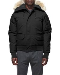 Canada Goose - Pbi Chilliwack Regular Fit Down Bomber Jacket With Genuine Coyote Trim - Lyst