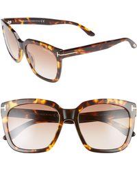 Tom Ford - Amarra 55mm Gradient Lens Square Sunglasses - Havana/ Gradient Brown - Lyst