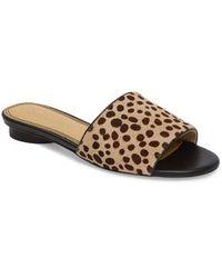 Splendid - Betsy Slide Sandal - Lyst