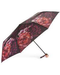 Ted Baker - Splendour Compact Umbrella - Lyst