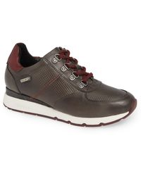 ee33a7cb2a8 Lyst - Pikolinos Mundaka Sneaker W0j-6750 in Black