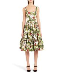 Dolce & Gabbana - Fig Print Poplin Dress - Lyst