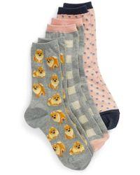 Hot Sox - Dogs 3-pack Socks - Lyst