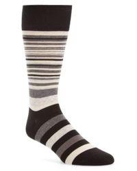 Cole Haan - Town Stripe Crew Socks - Lyst