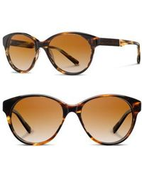 Shwood - 'madison' 54mm Polarized Sunglasses - Lyst