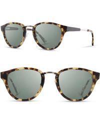 Shwood - 'ainsworth' 49mm Polarized Sunglasses - - Lyst