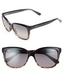 Maui Jim Starfish 56mm Polarized Cat Eye Sunglasses - - Multicolour