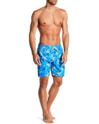 b782ce3e15 Michael's Swimwear - Turtle Print Swim Trunks - Lyst