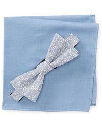 Original Penguin - Llodra Floral Pre-tied Bow Tie & Solid Pocket Square Box Set - Lyst