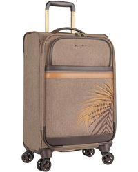 """Tommy Bahama - Chesapeake Bay 20"""" Carry-on Spinner Suitcase - Lyst"""