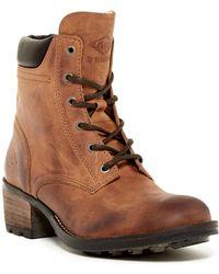 PLDM - Carleton Lace Boot - Lyst