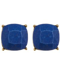 Vince Camuto - Lapis Stud Earrings - Lyst