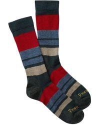 Pendleton - Yakima Mineral Umber Stripe Wool Blend Crew Socks - Lyst