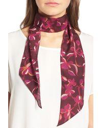 Halogen - Botanical Print Skinny Silk Scarf - Lyst