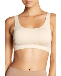 Yummie By Heather Thomson - Padded Scoop Neck Bra - Lyst