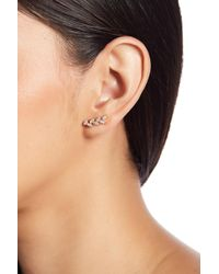 Shashi - 18k Yellow Gold Vermeil Pave Crystal Leaf Ear Climbers - Lyst