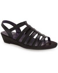 Vaneli - 'darena' Wedge Sandal (women) - Lyst