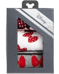 Disney - Minnie Mouse 3-pack Crew Socks - Lyst