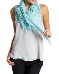 Blue Pacific - Solid Tissue Cashmere Blend Scarf - Lyst