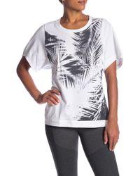 adidas - Palm Print Tee - Lyst