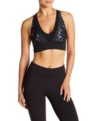 Betsey Johnson - Deep V-neck Mesh Floral Print Sports Bra - Lyst