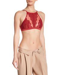 Dress Forum - Embroidered Mesh Bralette - Lyst