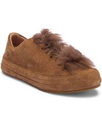 UGG - Blake Genuine Lamb Fur Sneaker - Lyst