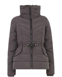 Oasis Luxe Short Padded Jacket - Gray