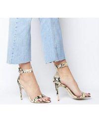 e06c6978e2 Public Desire Heart Throb Rose Gold Clear Detail Court Shoes in ...